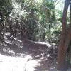 Longavi, Maule 50 hectareas (con orilla de Rio)